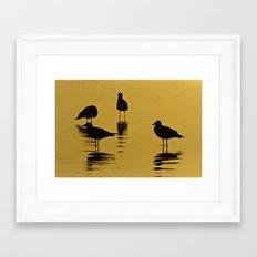 Seagull Silhouettes Framed Art Print