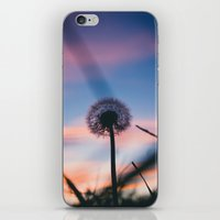 Hollow Sunset iPhone & iPod Skin