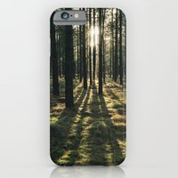 Sunlight through a dense forest. Norfolk, UK. iPhone 6 Slim Case