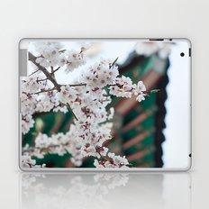 Blossoms Near the Bell, Seoul Korea Laptop & iPad Skin