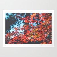 Lake Tahoe Leaves Art Print