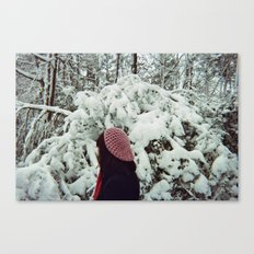 Voices in Winter Canvas Print