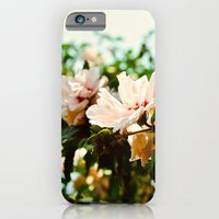 iPhone & iPod Case featuring Light and Delicate by Chris Klemens