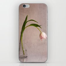 kiss of spring iPhone & iPod Skin