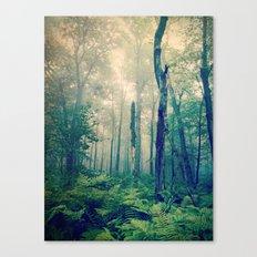 Walk to the Light Canvas Print
