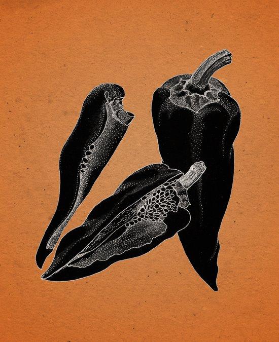 Chillies by night Art Print