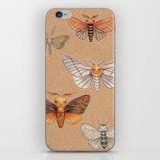 Un-Natural Selection: Carmine Stripee Halloween Moth iPhone & iPod Skin