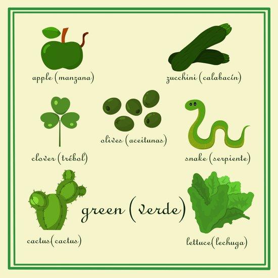 Colors: green (Los colores: verde) Art Print