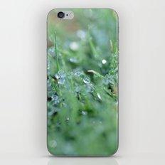 Morning Glitter iPhone & iPod Skin