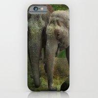 elephants iPhone & iPod Cases featuring Elephants  by Guna Andersone & Mario Raats - G&M Studi