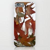 Holding Onto Autumn iPhone 6 Slim Case