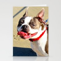 Portrait Of A Boston Ter… Stationery Cards