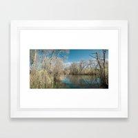 Pond Water Framed Art Print