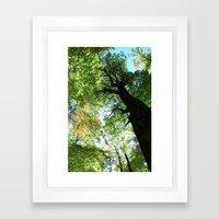 Woodland Canopy - Green … Framed Art Print