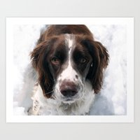 Freckles In Snow Art Print