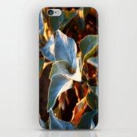 Desert Leaves II iPhone & iPod Skin