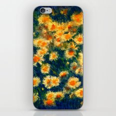 Painted Daisies iPhone & iPod Skin