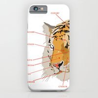 iPhone & iPod Case featuring Tiger Colors by Les Gordon