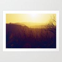 Malibu Wildflowers Art Print