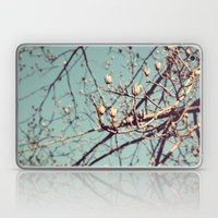 Mountain Nature Laptop & iPad Skin