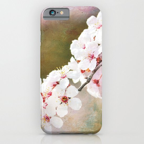 Pretty Cherry Blossom Flowers iPhone & iPod Case