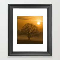 Oak Tree Winter Time Framed Art Print