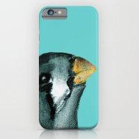 Zebra Finch - Teal iPhone 6 Slim Case