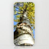 Running up the tree  iPhone 6 Slim Case