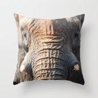 African Elephant 1 Throw Pillow