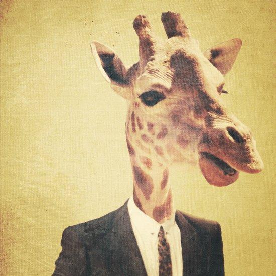 Humanimal: Giraffe  Canvas Print