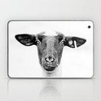 Sheepishly Laptop & iPad Skin