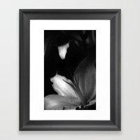 Lily.  Framed Art Print