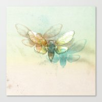 Mr.Summertime (Cicada Sk… Canvas Print