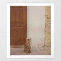 Moroccan Cat Art Print