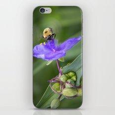 In Flight iPhone & iPod Skin