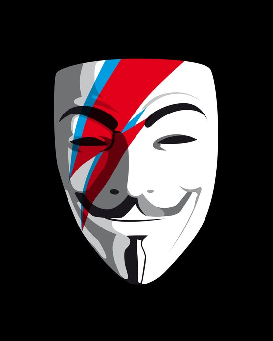 Viggy Starfawkes – Who wants to be anonymous? Art Print