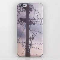 colony iPhone & iPod Skin