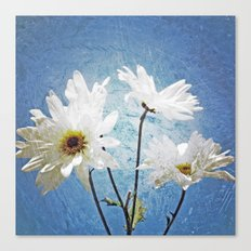 Dear Daisy Canvas Print