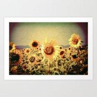 Sunflowers Art Print