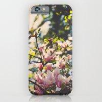 Magnolias in spring iPhone 6 Slim Case