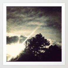 Sun setting threw the trees. Art Print