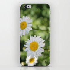 Three Lovely Ladies iPhone & iPod Skin