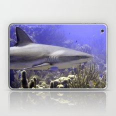 Shark Swimming Past Laptop & iPad Skin
