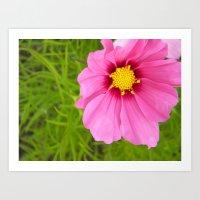 Bright Pink Flower Art Print