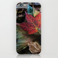 Leaves On The Ground iPhone 6 Slim Case