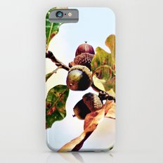 Enjoying the Sun iPhone 6 Slim Case