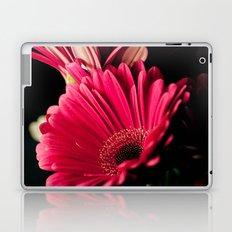 Pink Shadows Laptop & iPad Skin