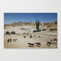 Horses In Goreme Canvas Print