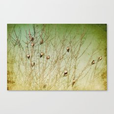 The Berry Snatchers Canvas Print