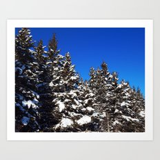 Winter Greens And Blue S… Art Print
